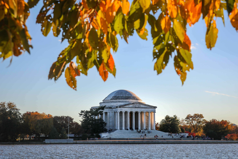 Fall DC image